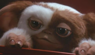 Movie News: A remake of Gremlins is happening