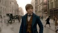 Podcast: Fantastic Beasts Spoilers – Ep. 196 Bonus Content